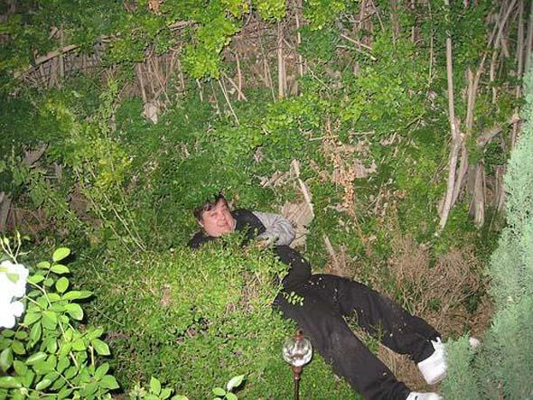 swifty-in-bushes1