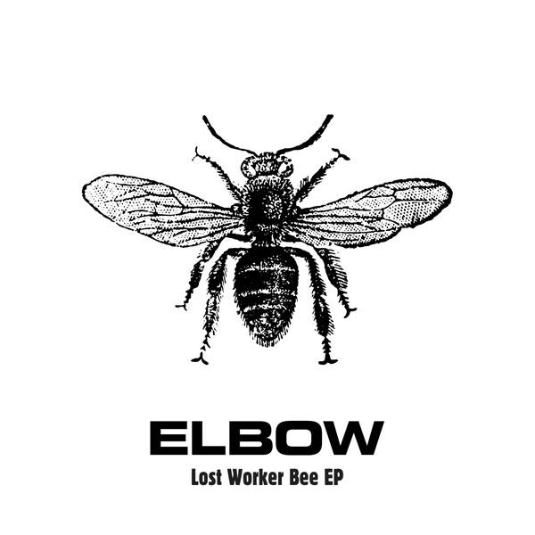 elbow (1)